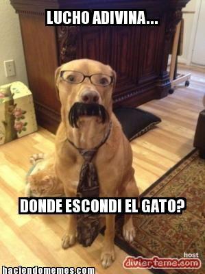 Aqui Hay Gato Encerrado Mustache Dog Cute Animals Funny Animals