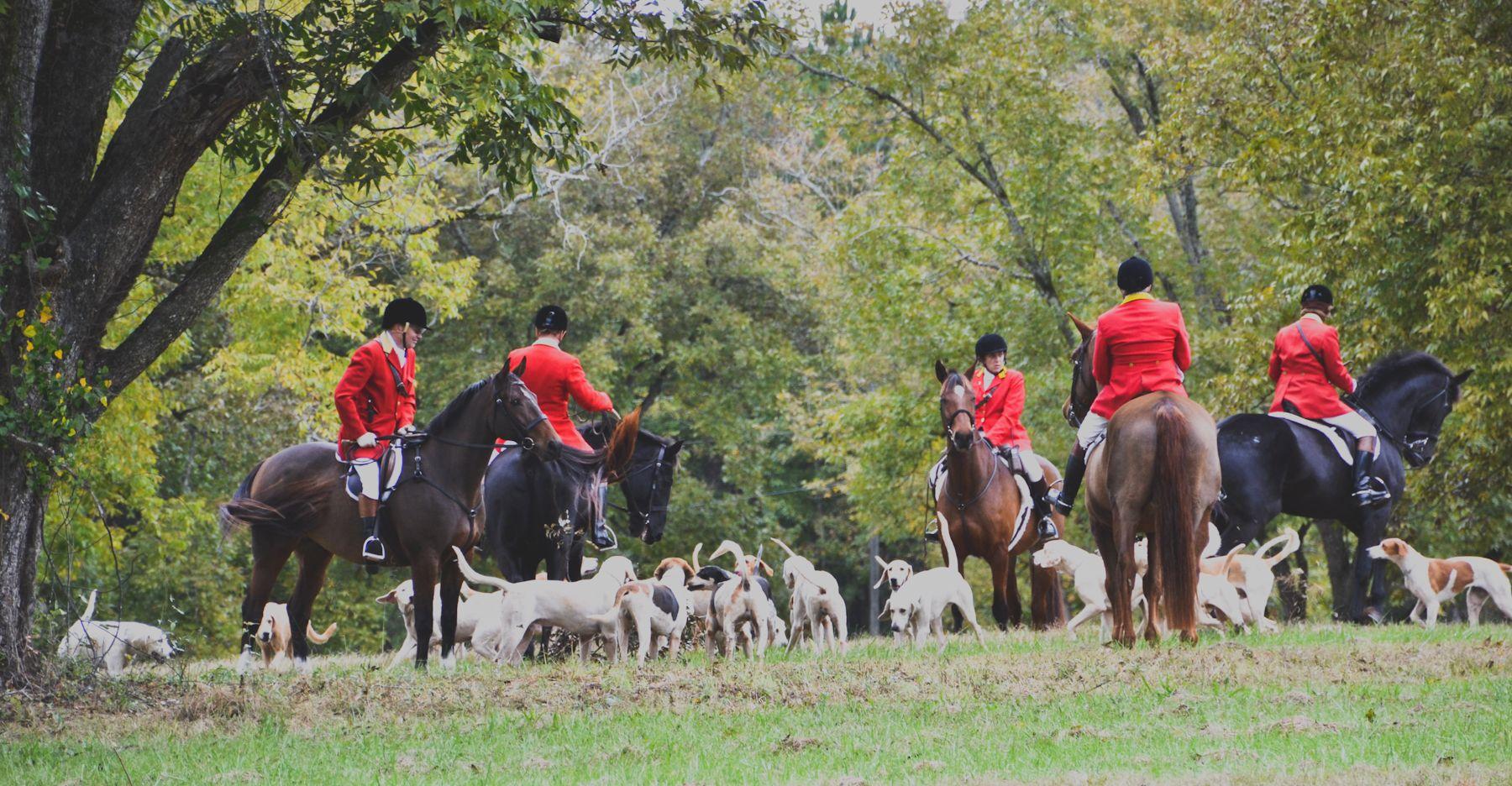 ON HORSE NATION >> Tally Ho! A Georgia Fox Hunting Photo