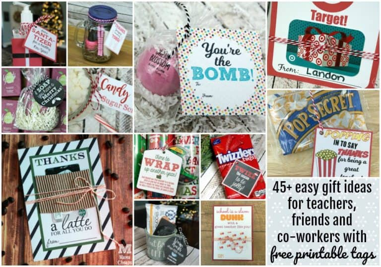 55+ Easy Teacher Gift Ideas with FREE Printable Tags | Mama Cheaps