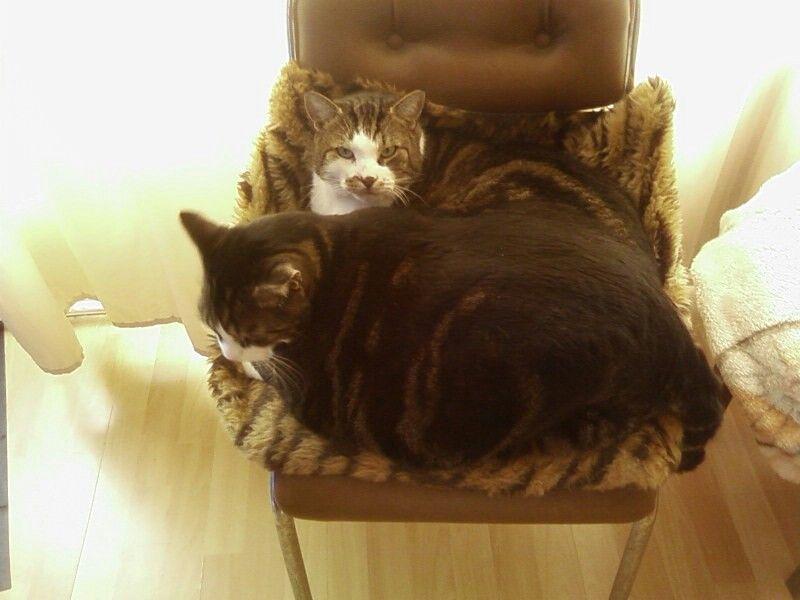 Alex en Binky :'(
