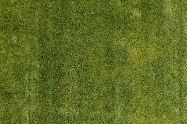 Image Result For Grass Texture Grass Textures Texture