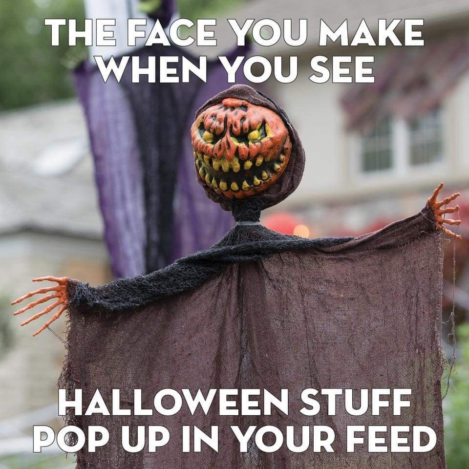 Pin by k a s e y 🎃🕸💀🍁🔪 on Every Day Is Halloween in 2020
