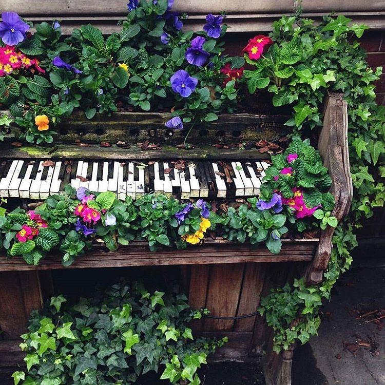 garden aesthetic #gardencare s: // :