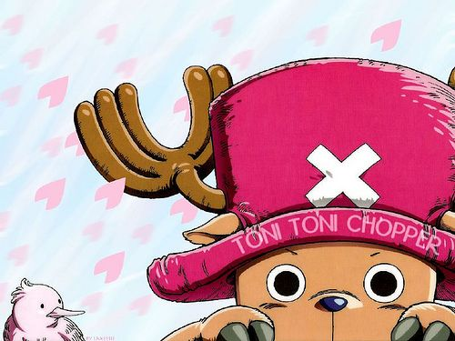 one peace one piece chopper anime wallpaper one piece photos