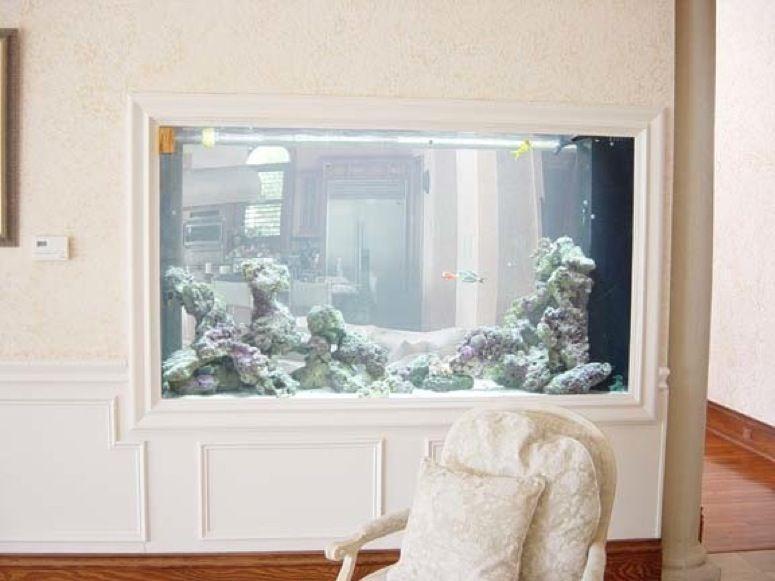 would love to do this between room aquarium idea!   Aquarium ...