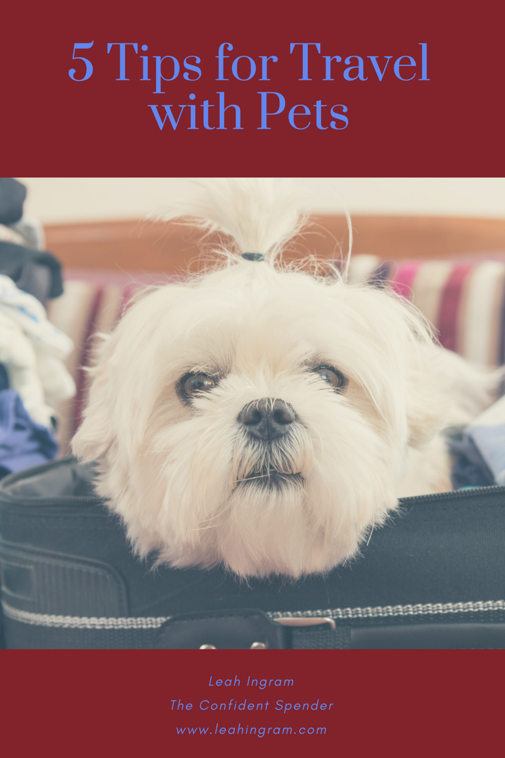 How to Vacation with Your Dog Leah Ingram Pet travel