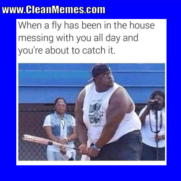 2016 Popular Memes Catch It Clean Memes The Best The Most Online Clean Funny Memes Funny Stories Clean Memes