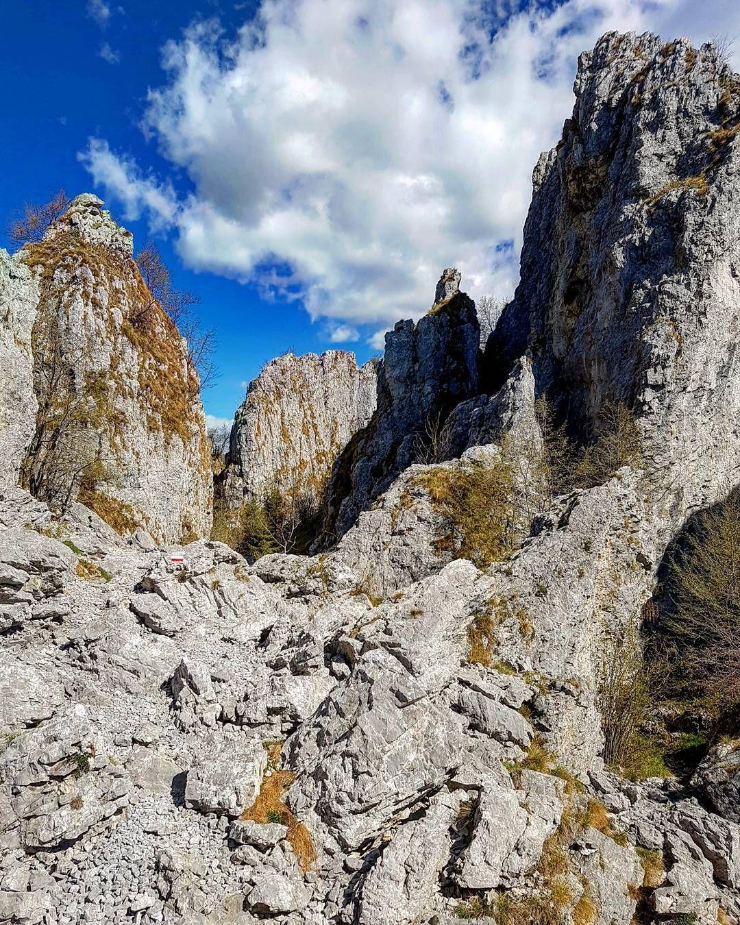 Il sentiero all'interno dei Labirinti della Cornagera è bellissimo. Si procede accanto alle alte pareti di roccia famose per le arrampicate. Stupendo. #montagna #trekking