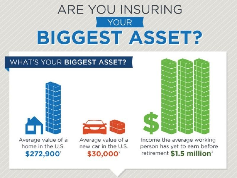 Are You Insuring Your Biggest Asset Infographic Life Insurance Policy American Life Insurance Life Insurance Companies