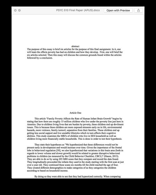 liberty essay example