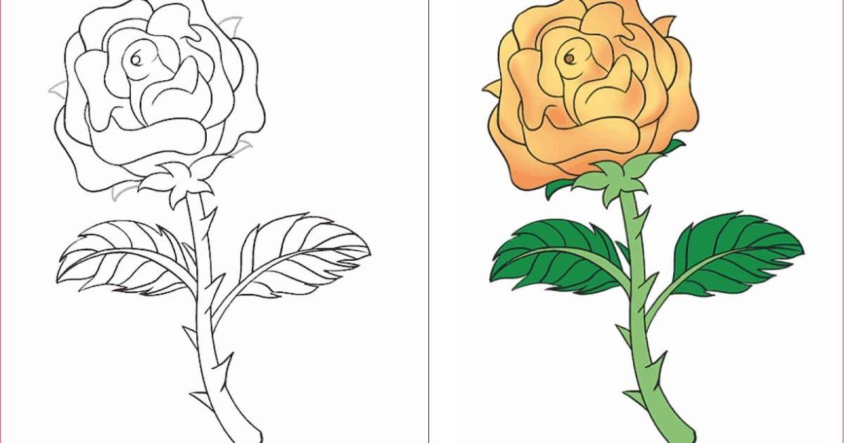 Fantastis 13 Gambar Bunga Mudah Ditiru 30 Gambar Sketsa Bunga Mudah Bunga Matahari Mawar Tulip 3000 Gambar Doodle Art Nama Huruf Di 2020 Sketsa Lukisan Bunga Bunga