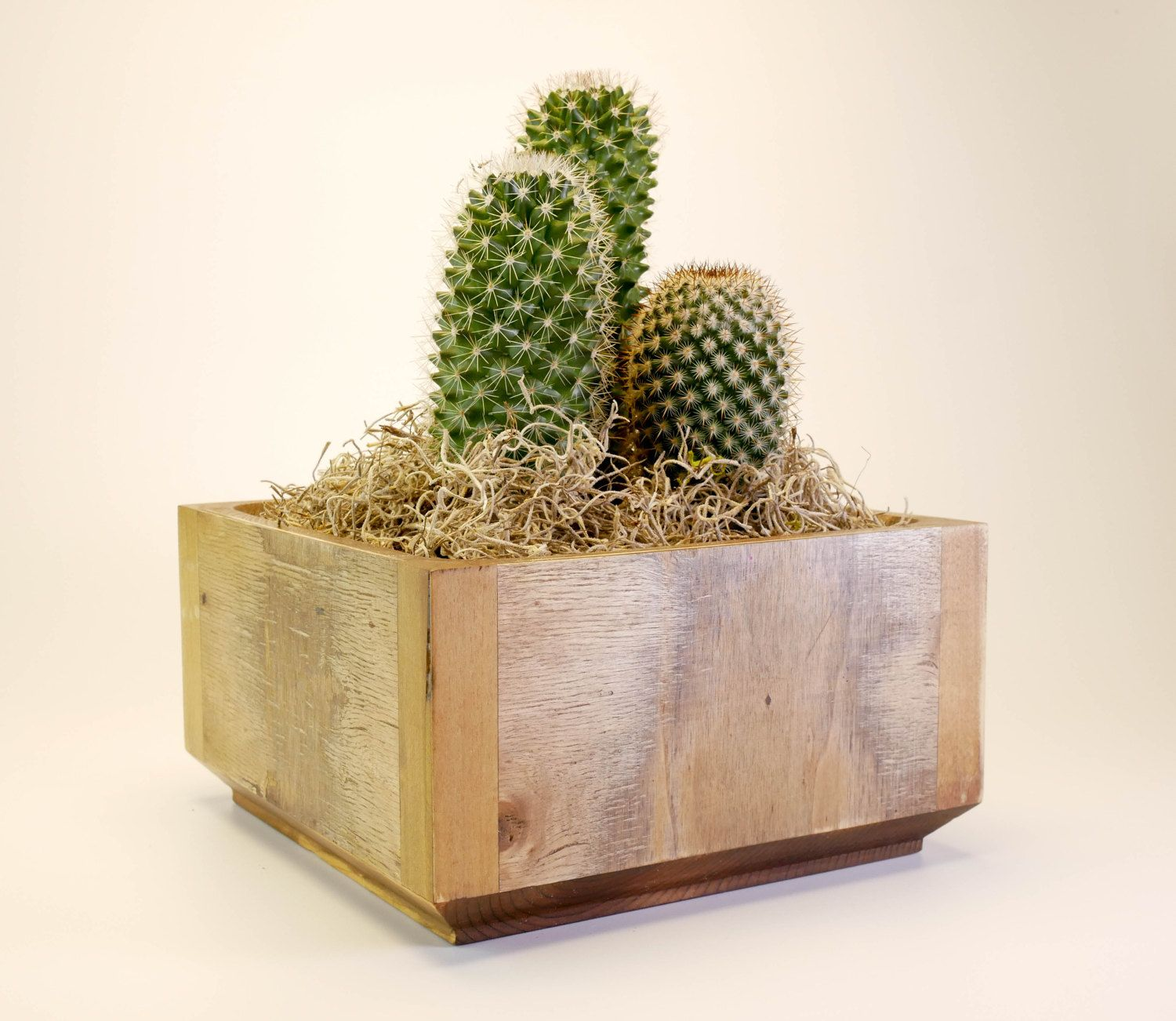 Decorate your home with this rectangular distressed zen for Wooden cactus planter