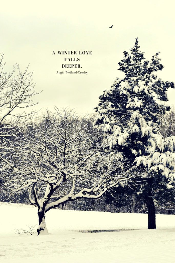 Winter Quotes To Make The Soul Sparkle Snow Quotes Winter Snow Photography Winter Quotes