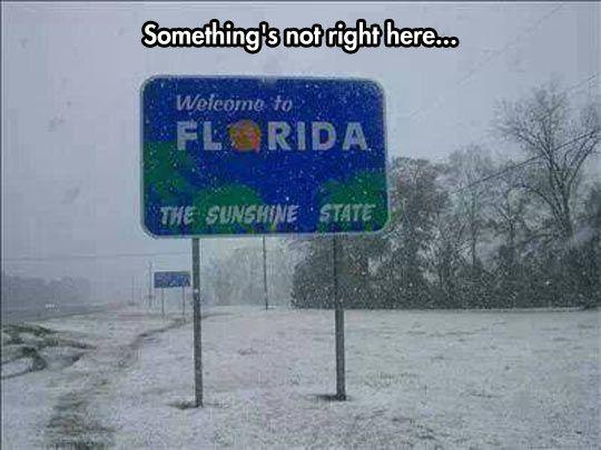 50 Degrees In Florida Florida Funny Weather Memes Florida Meme