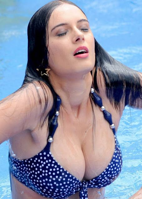 German-Indian Actress And Model Evelyn Sharma Hoe Sexy -7981