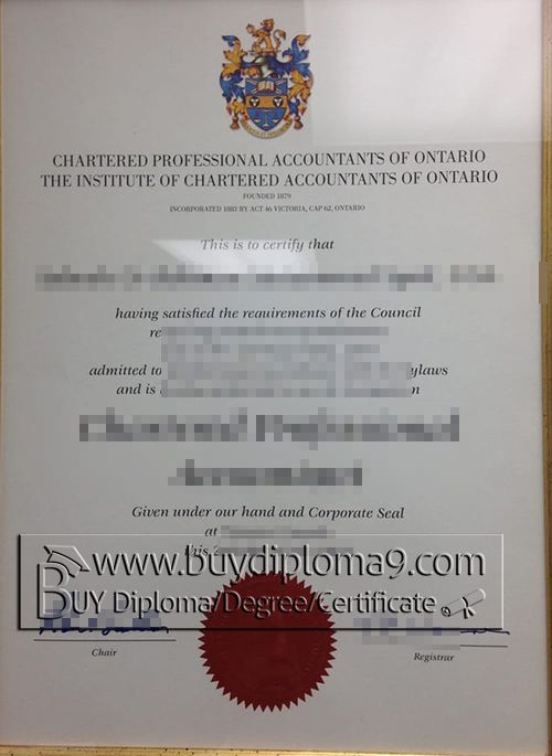 Chartered Professional Accountants of Ontario certificate, Buy ...