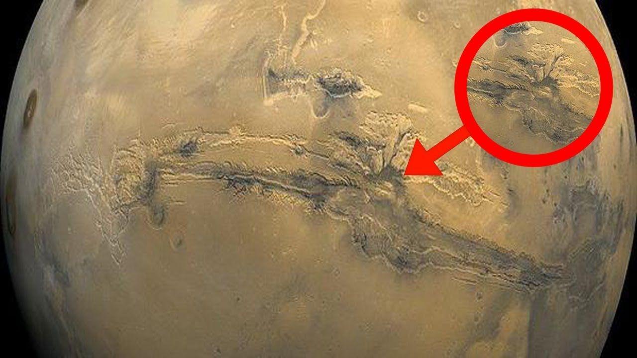 معجزة جديدة بالكرة الأرضية تكشف عنها الأقمار الصناعية وهي مفاجأة هزت الع Peace Symbol Symbols Art