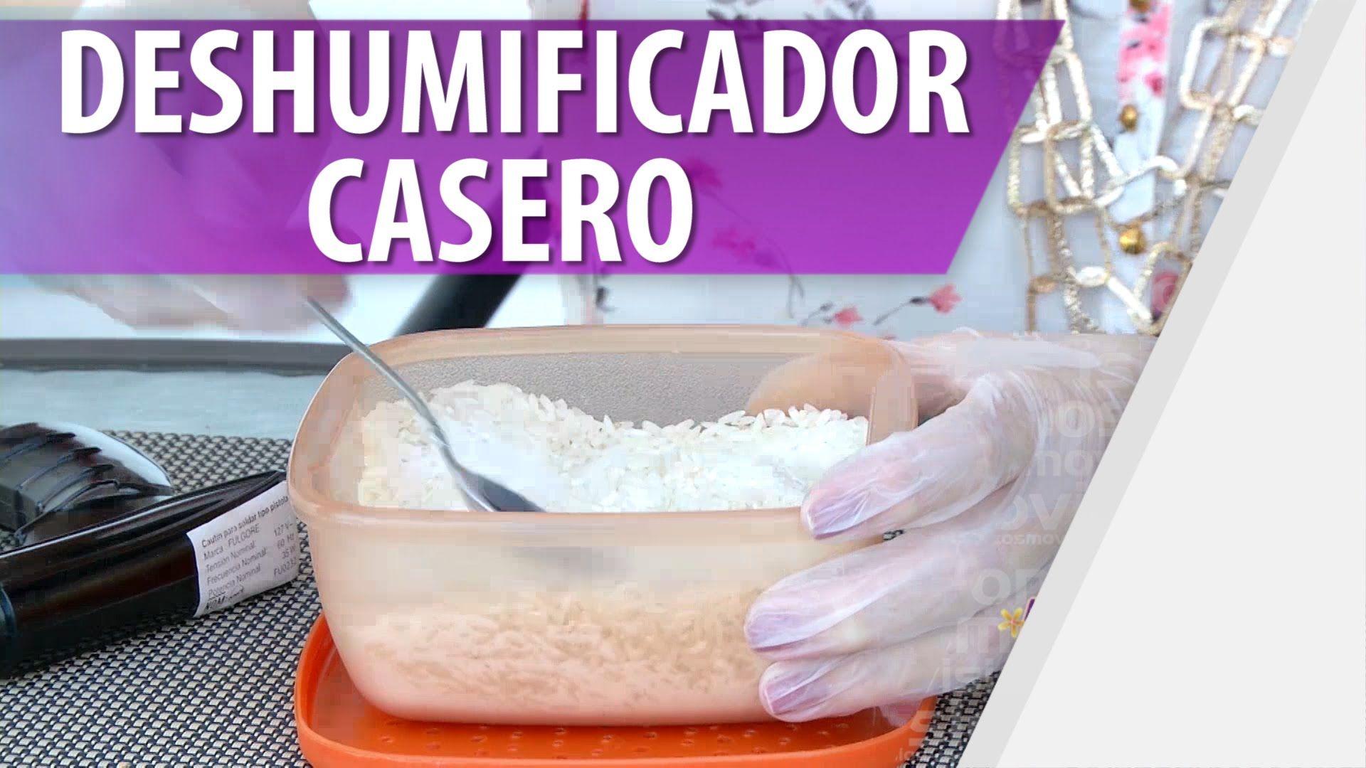 Cómo Hacer un Deshumificador Casero / Evita Humedades en ...