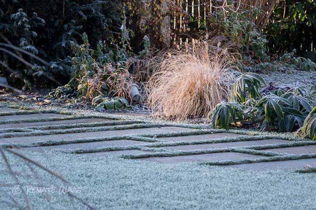 Trittplatten mit Rasenfugen und befahrbarer Schotter - Rasen als