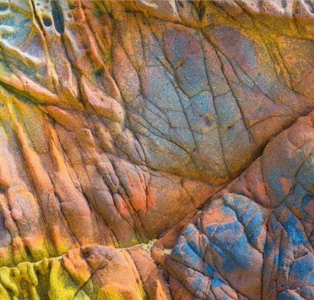 15 Breathtaking Photos of Abstract Art Hidden in Nature