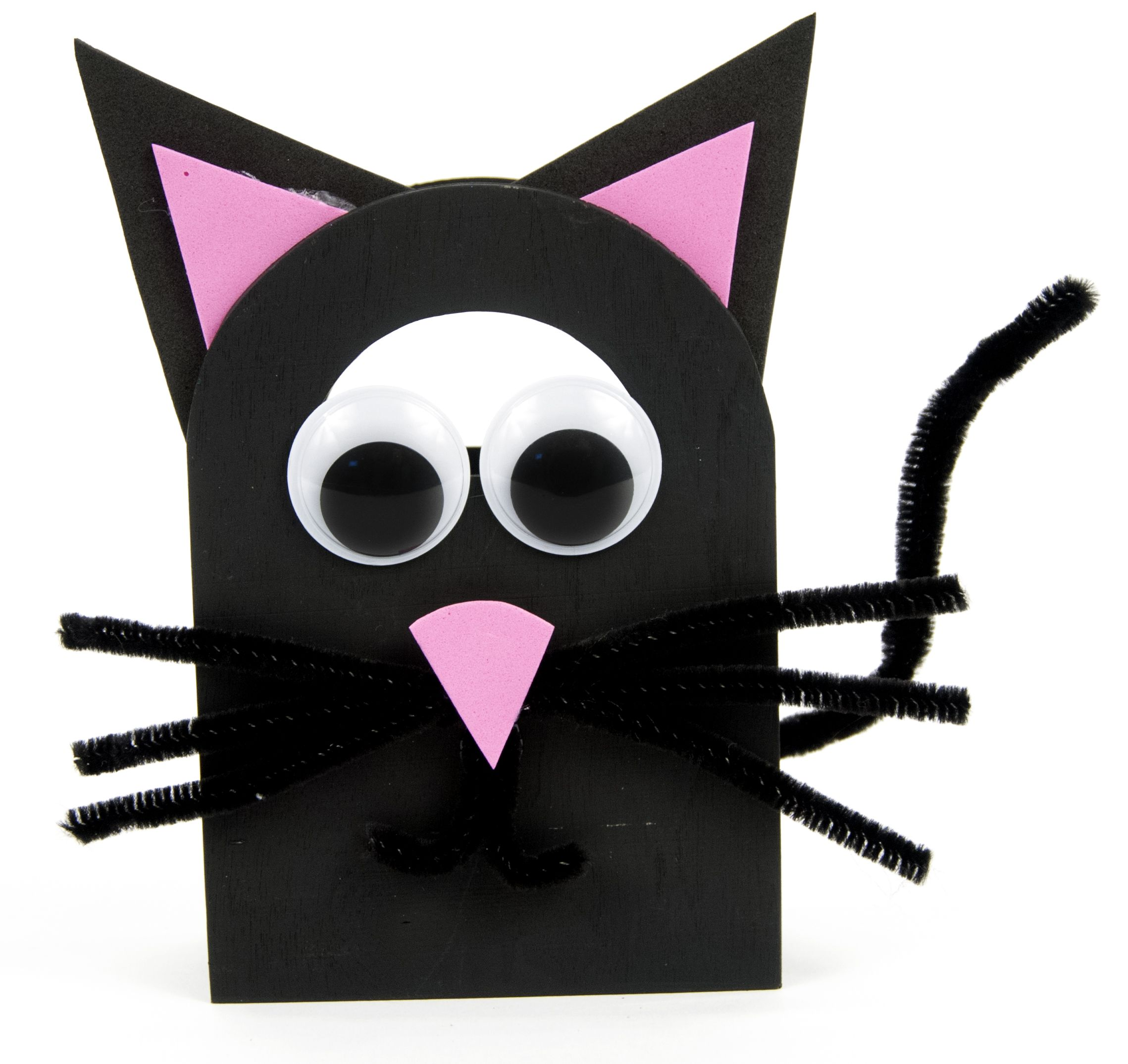Gato preto - hallowen