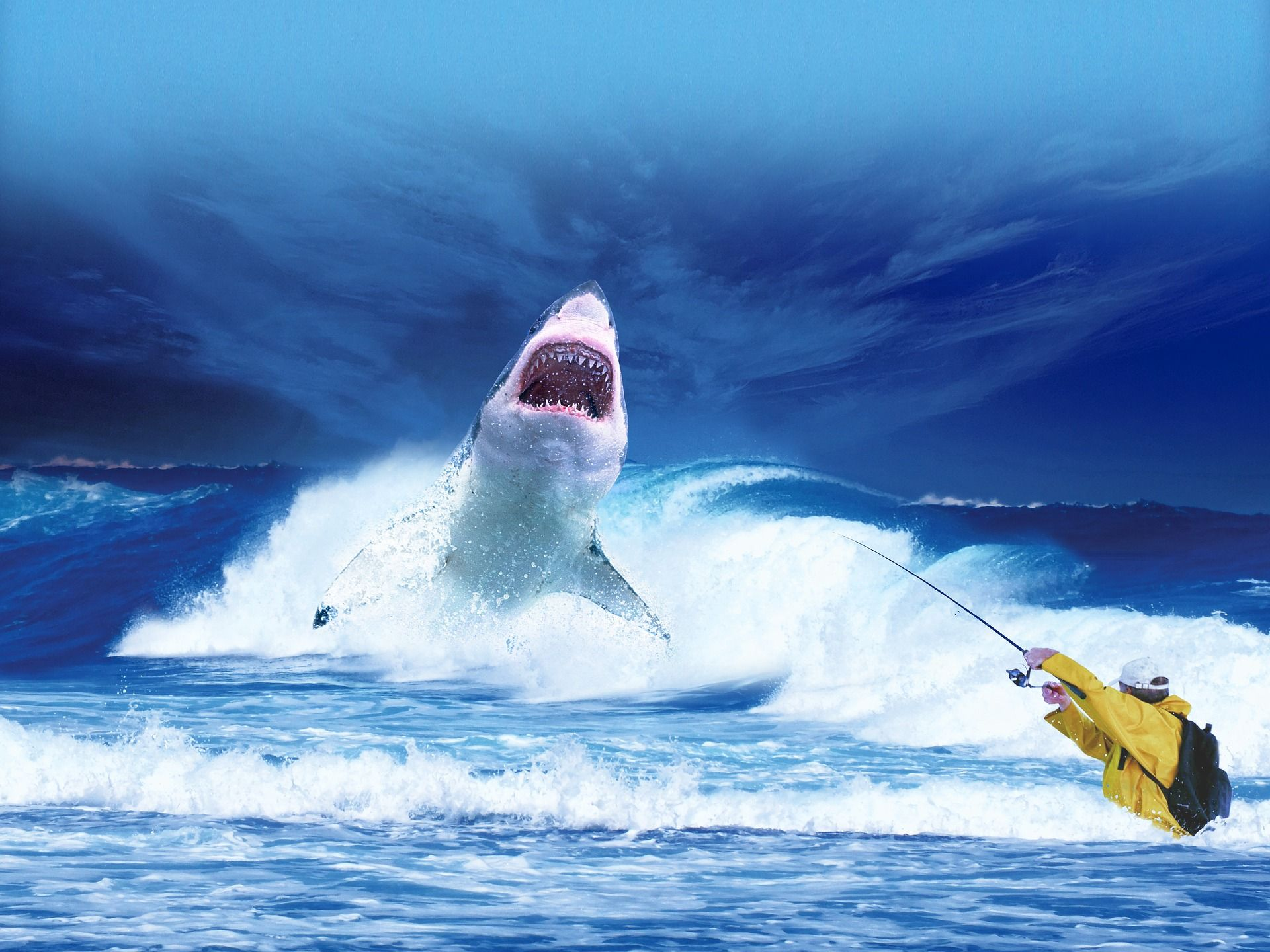 Shark In Blue Ocean Fishing By Fisherman Funny Wallpaper 19201440