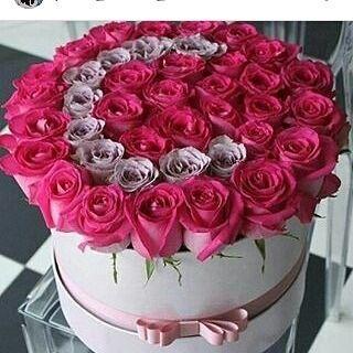 روز بنفسج الوان نبات ورد تصميمي تصويري ورد بوكيه تنسيق ورد تنسيقات Nature Tulips Lily Pink Rose Bouquet Wrap Flowers Bouquet Bouquet Box