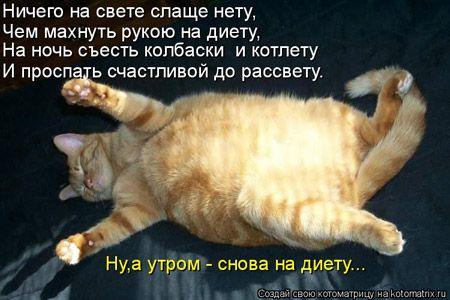 Картинки по запросу прикольные про диету (с изображениями ...