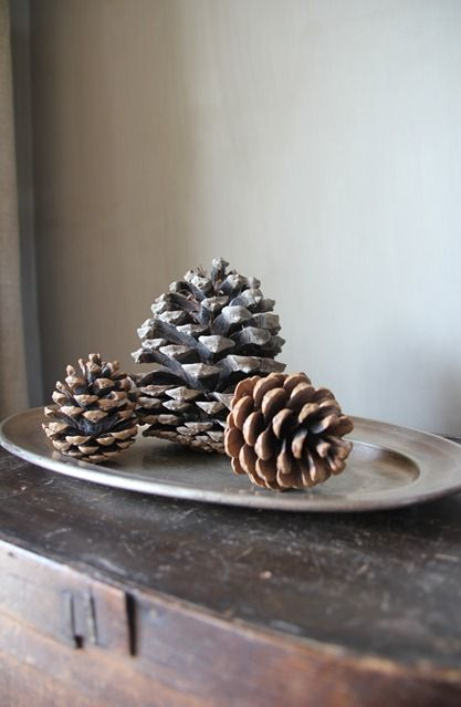 pewter tray & pinecones