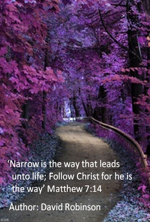 'Narrow is the way that leads unto life; Follow Christ for he is the way'             Matthew 7:14       Author: David Robinson