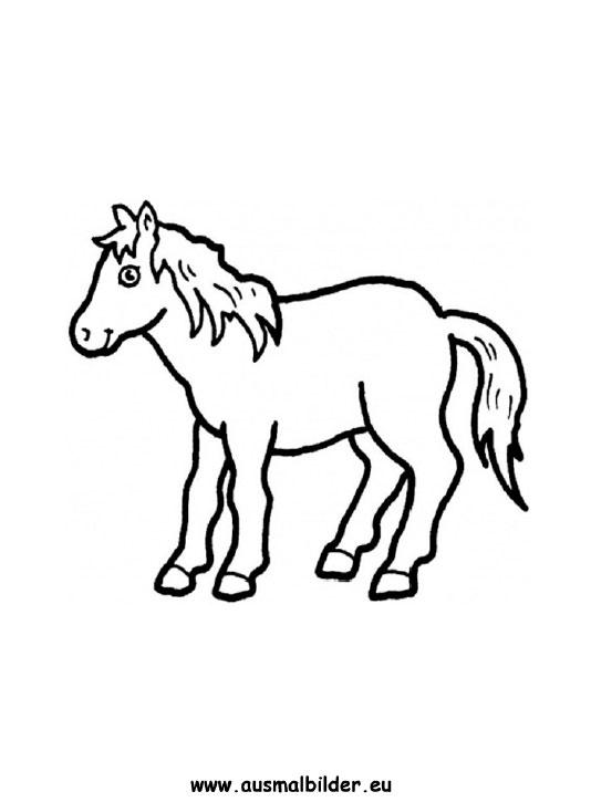 ausmalbild pony zum ausmalen ausmalbilder