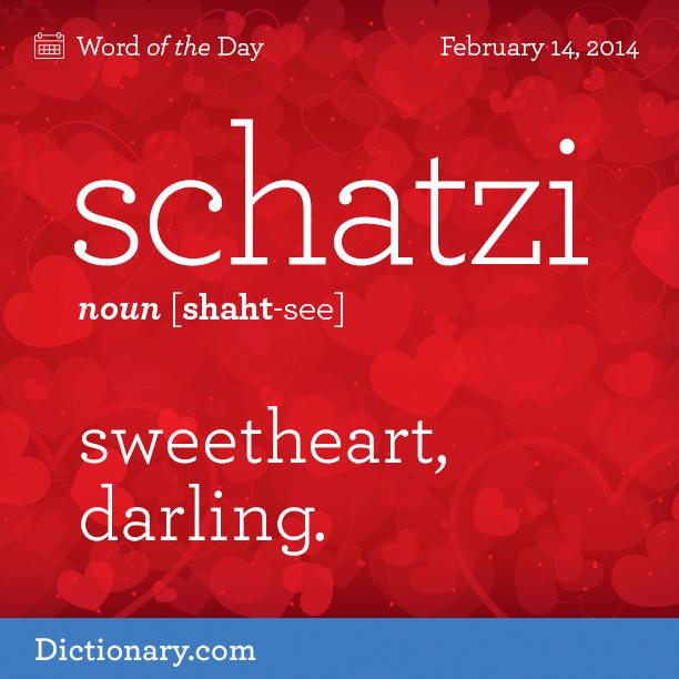 Schat·zi [shaht-see] Noun Slang. Sweetheart; Darling