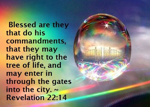 REVELATION 22:14 KJV     Blessed are they that do his commandments