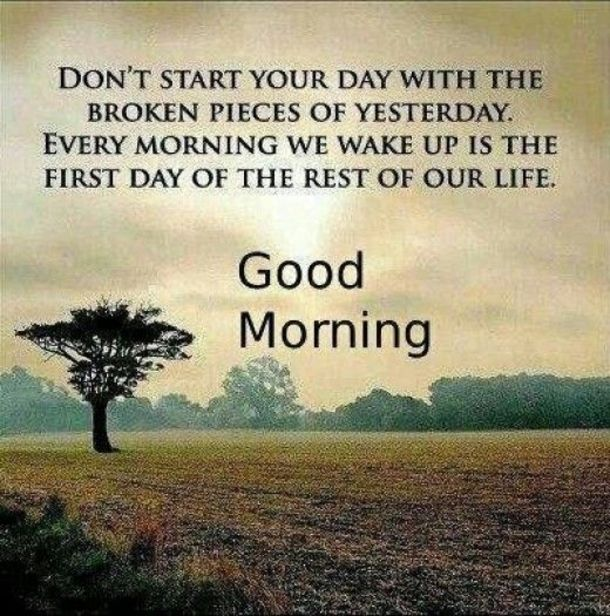 25 Best Good Morning Quotes | Quotes To Live By | Quotes