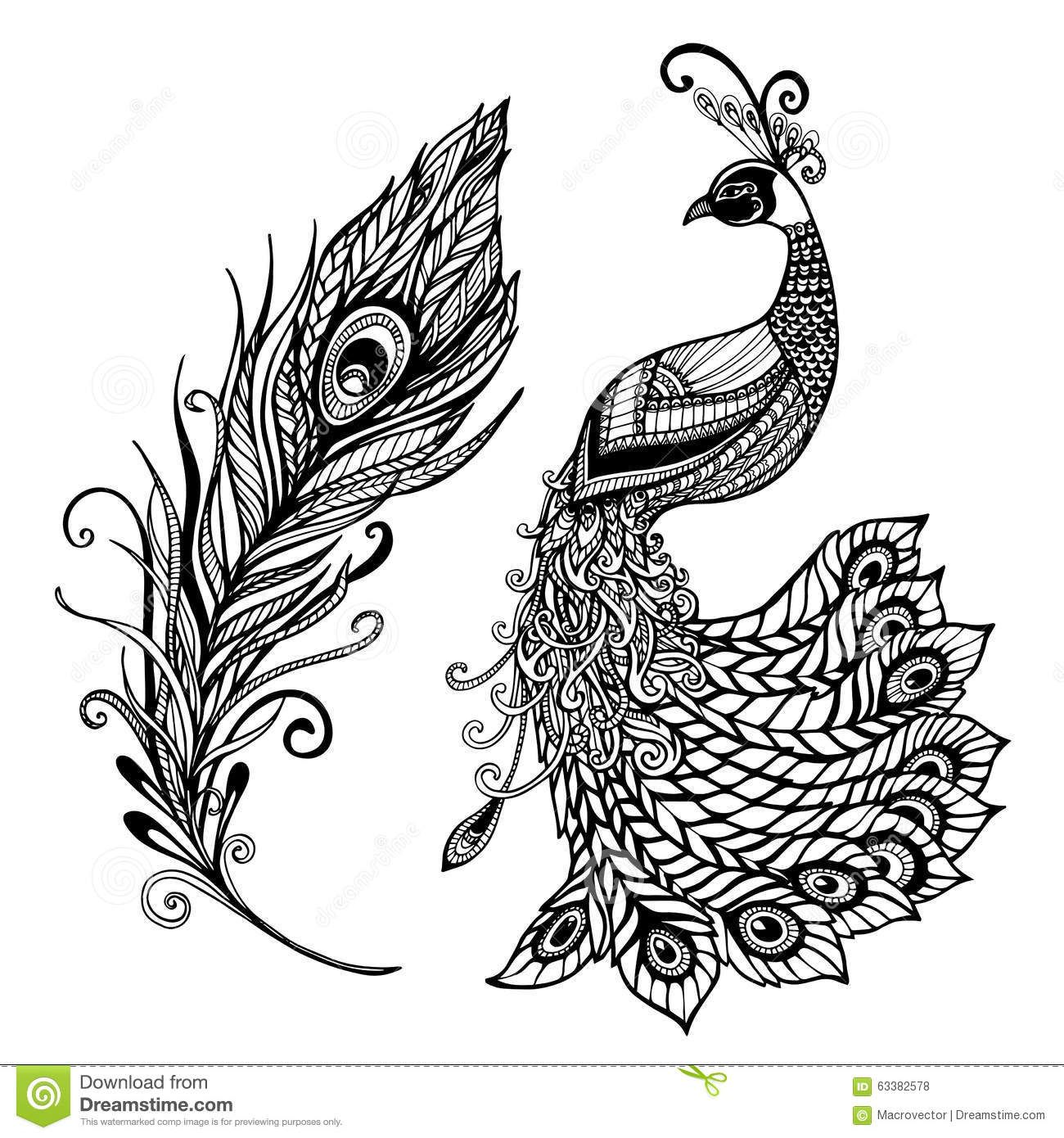 Free coloring pages of peacock feathers coloring everyday printable - Peacock Feather Black Background Stock Photos Images Pictures