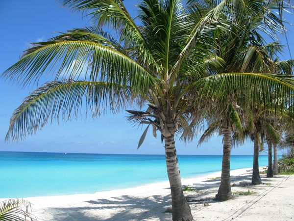 Bimini Favorite Beach I Have Been At With My Hubby