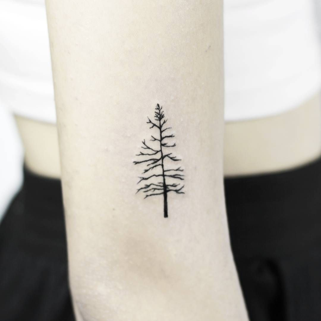 pin by joanys l pez on body ink pinterest simple tree tattoo rh pinterest com simple tree tattoos for guys simple tree tattoos for guys