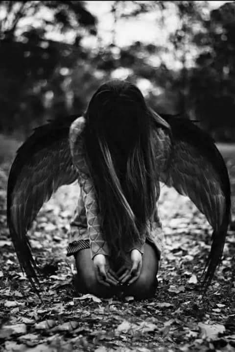 andělé randění