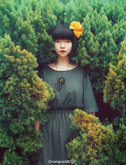 I love this woodland fashion shoot! There's something eerie and mysterious about it. Green tones