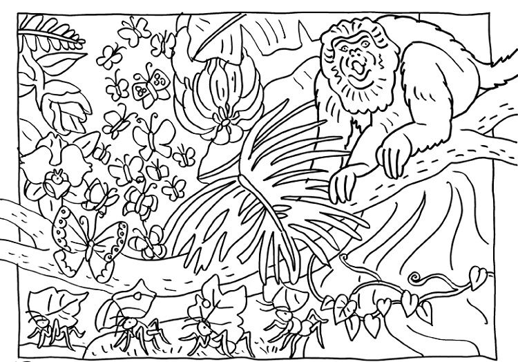 Animal Camouflage Coloring Pages