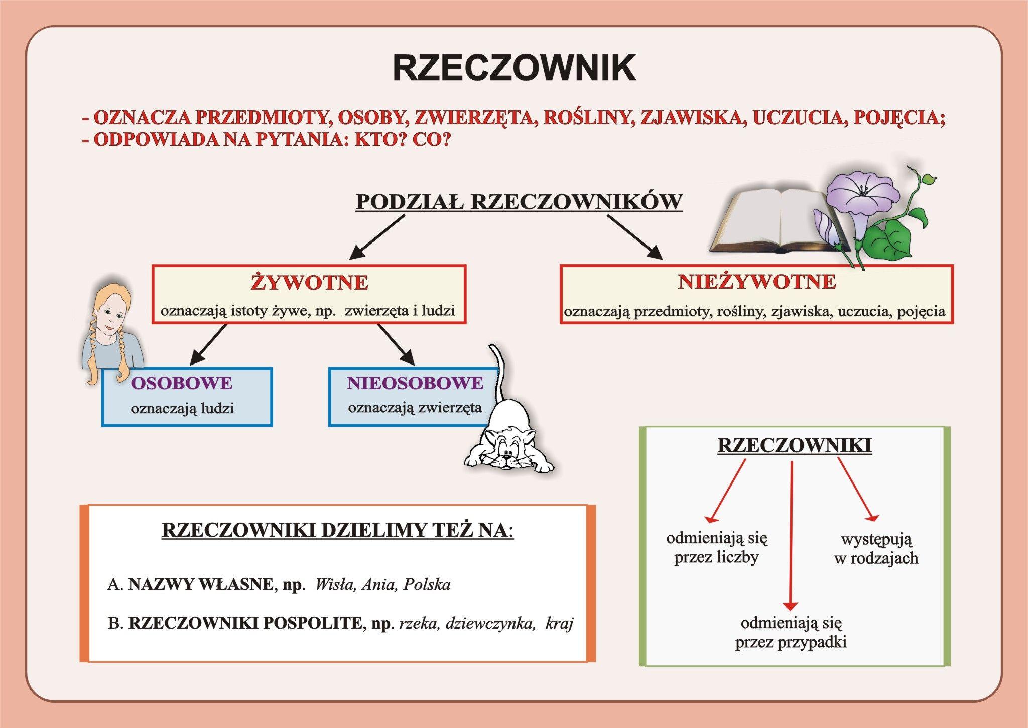 Pin by Justyna Kosińska on Język polski w szkole | Polish language,  Education, School