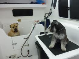 Mobile Dog Groomers Mobile Pet Grooming Pet Grooming Business Pet Grooming