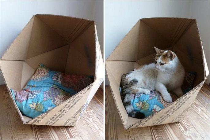 Cómo Hacer Tu Propia Cucha S Cajas De Arena Para Gato Camas De Gato Casa De Gato De Cartón