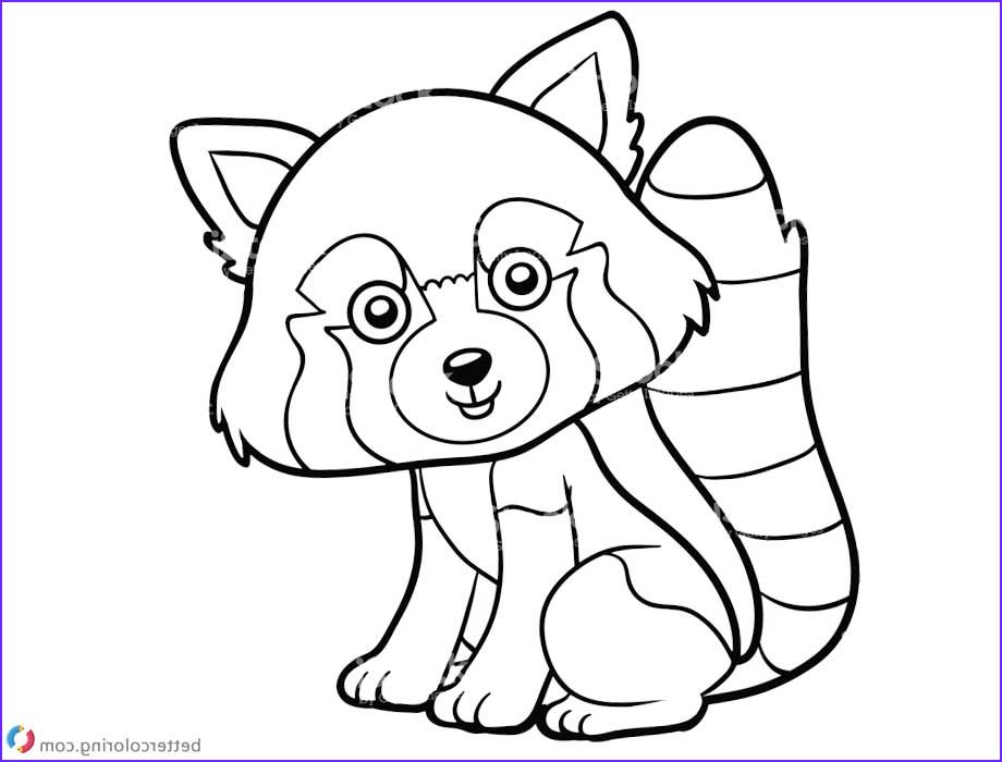 Red Panda Coloring Pages Clipart Free Printable Coloring Bear Coloring Pages Panda Coloring Pages Puppy Coloring Pages