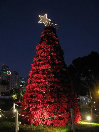 Seaport Village | Christmas time is here, Beach christmas, California travel