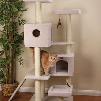 Petco Premium Tree Highrise for Cats - DIY inspiration