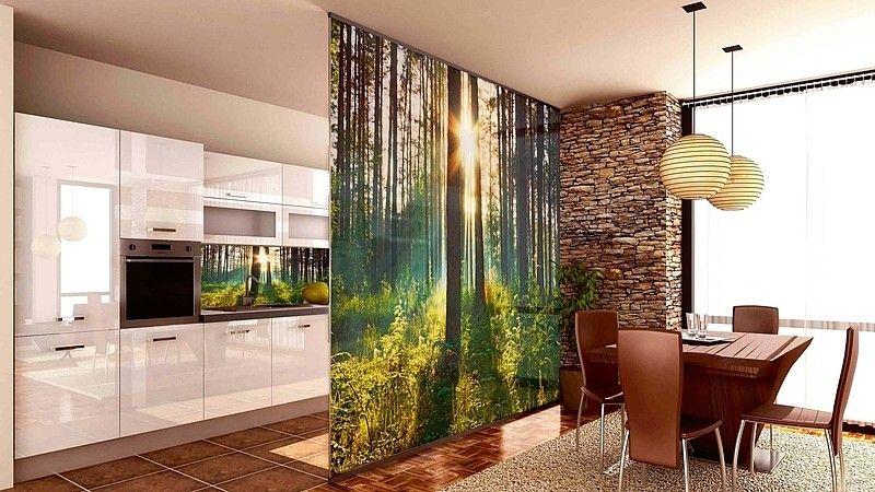 декоративные перегородки из бамбука между прихожей и гостиной фото: 12 тыс изображений найдено в Яндекс.Картинках