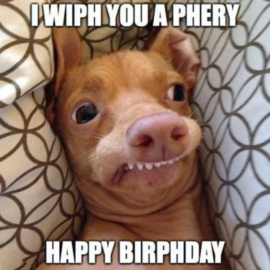 25 Happy Birthday Coffee Memes And Funny Images Funny Happy Birthday Meme Happy Birthday Funny Dog Happy Birthday Funny