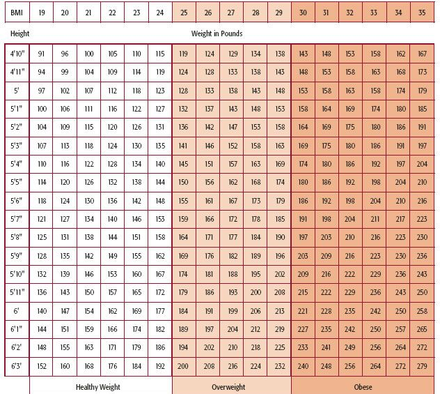 Weight Chart  Fitness Healthy    Weight Charts