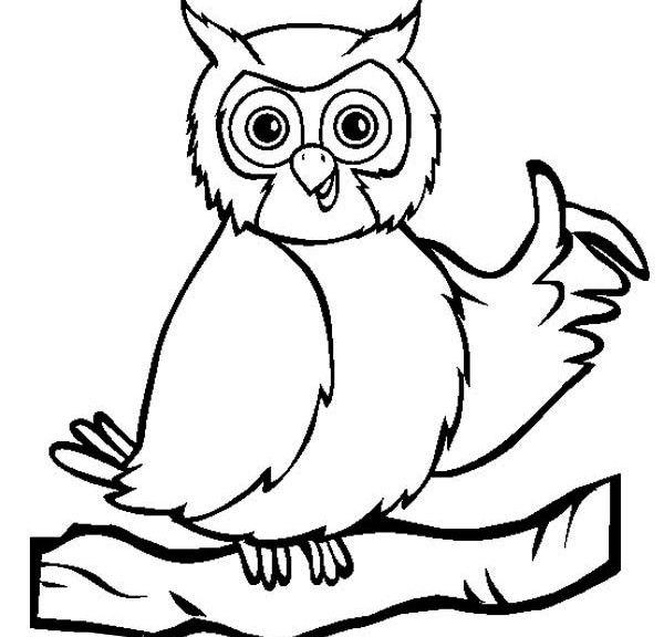 Owl Coloring Sheets Preschool Print